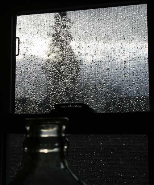 rainy-window-1