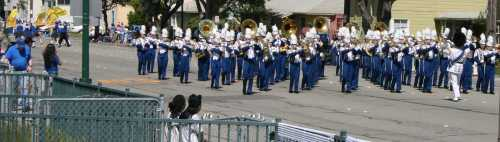 20090516_0287_blue band