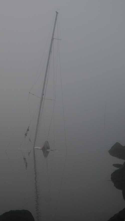 foggy boat tall