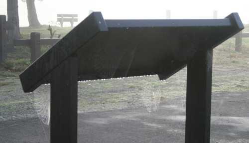 20091101_0511 kiosk 7 webs